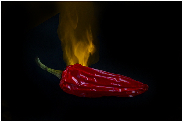 1 Red Hot Chilli Pepper - Sue Parry