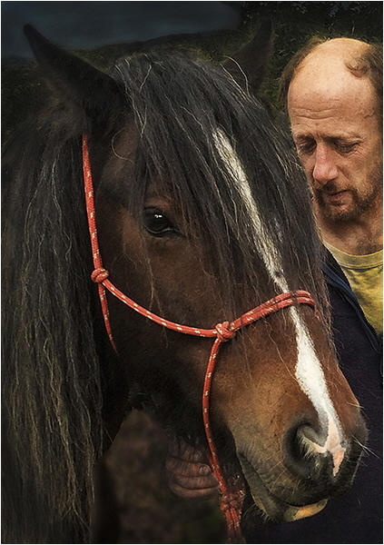 1 The Horse Whisperer - Ceri Williams